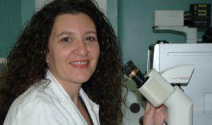 Descubren dos proteínas clave en la mayor parte de enfermedades