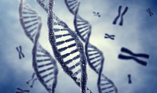 Descubren el gen clave detrás de la esclerosis lateral amiotrófica (ELA)
