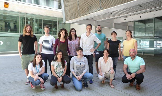 Descubren el papel clave del ARN en enfermedades neurodegenerativas