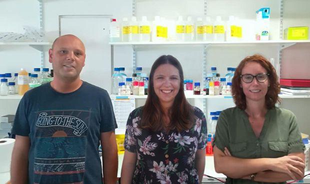 Descubren la eficacia de un supresor tumoral para luchar contra la obesidad