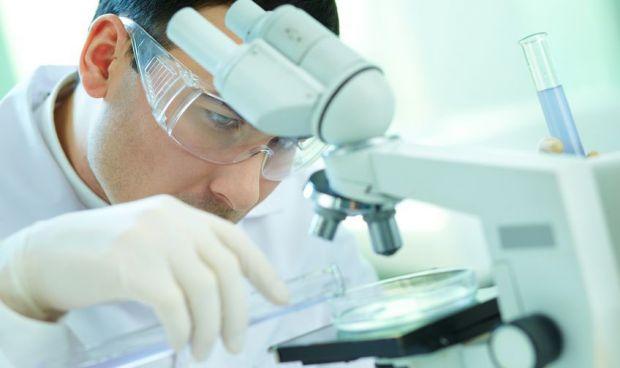 Descubren una proteína que suprime la respuesta inmune contra el cáncer