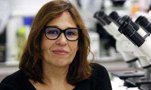 Designación huérfana europea a un fármaco español para la piel de mariposa