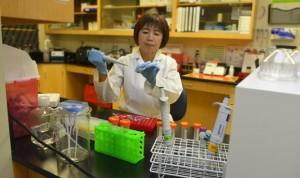 Una dieta baja en sal mejora el microbioma intestinal y la hipertensión