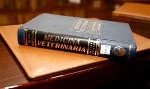 Dos facultades de Veterinaria españolas entre las 50 más internacionales