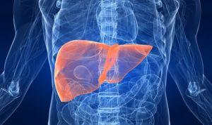 El ácido obeticólico revierte la fibrosis en colangitis biliar primaria