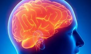 El alzhéimer aparece hasta 5 años más tarde en casos de 'cerebro activo'