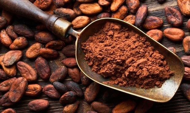 El cacao recupera la microbiota alterada por la diabetes tipo 2