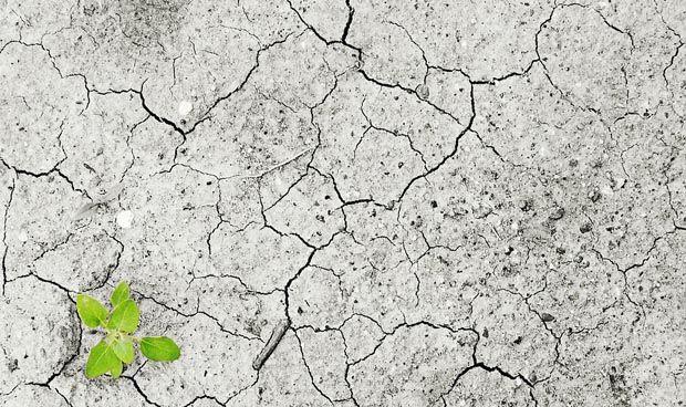 El cambio climático aumenta el riesgo cardiovascular en zonas mediterráneas