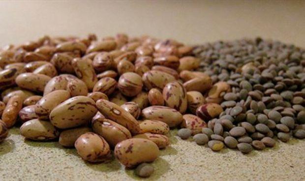 El Ciberobn estudia los efectos de las legumbres para prevenir el cáncer