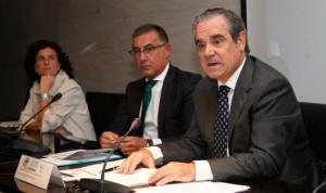 El Consejo aglutinará todo dato y acción que genere la farmacia española