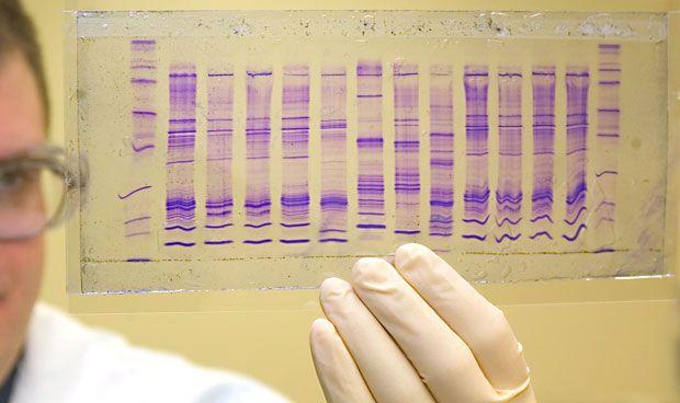 El consejo genético reduce los efectos adversos del tratamiento del TDAH