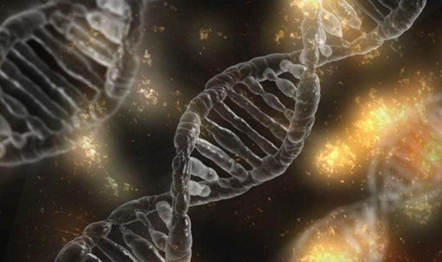 El 'corta-pega' genético puede causar mayor daño celular del que se creía