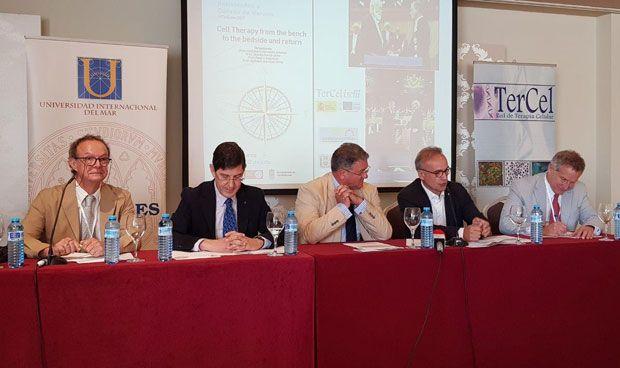 """El desarrollo de la terapia CART en España vive un """"momento crítico"""""""