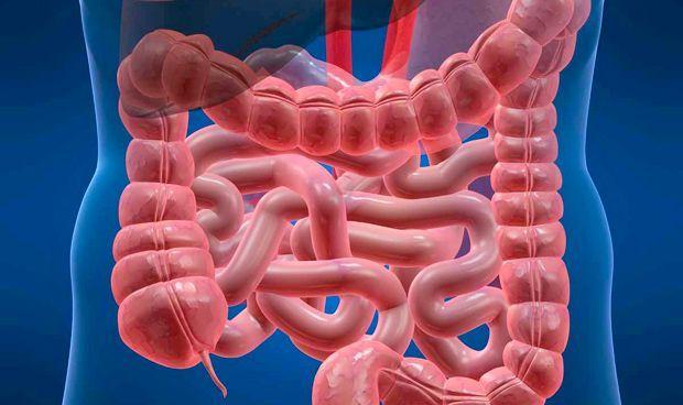 El intestino irritable, responsable de 1 de cada 4 consultas de Digestivo