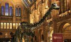 El niño con Asperger que corrigió al Museo de Historia Natural de Londres