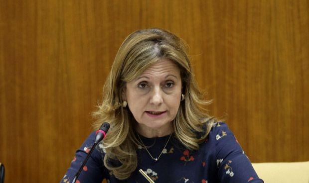 El nuevo Hospital de Málaga contará con 213 consultas y 52 quirófanos