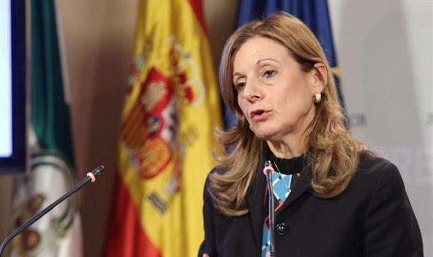 El plan funcional del nuevo hospital de Málaga, listo antes de verano