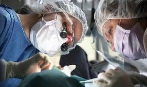El primer trasplante completo de pene y escroto, funcional tras un año