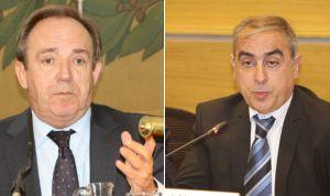 El PSOE llama a Castrodeza a explicar los planes de genéricos en el Senado