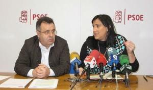 El PSOE pide a las Cortes de Castilla y León una lista de espera de 90 días