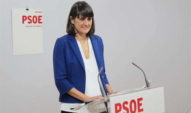 El PSOE se queja de la falta de investigación sobre enfermedades de mujeres
