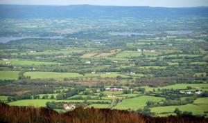 El secreto contra las superbacterias está en Irlanda