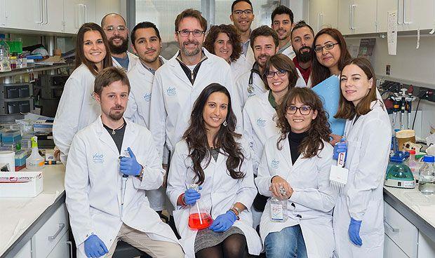 El VHIO desarrolla una inmunoterapia de precisión para cáncer de mama