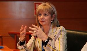"""MIR: el PP apuesta por una elección presencial o telemática """"con garantías"""""""
