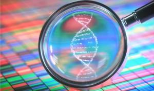 Encuentran 'puntos calientes' en el ADN que predicen el cáncer de piel