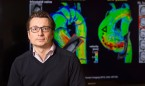 Encuentran una célula que puede sanar corazones dañados