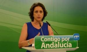Enfermería celebra la llegada de la nueva viceconsejera de Salud andaluza