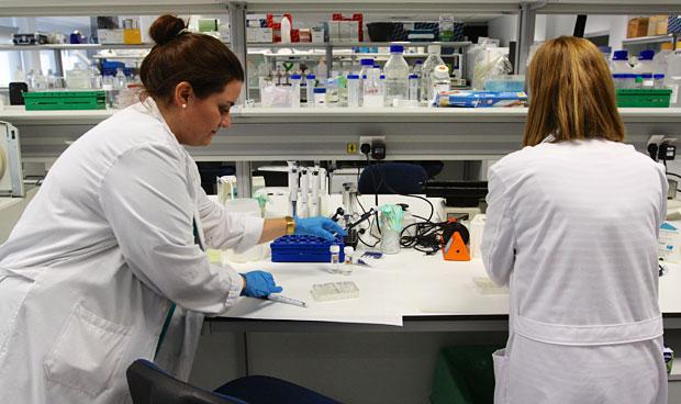 Entender el estrés sólido del tumor da nuevos enfoques a terapias clásicas