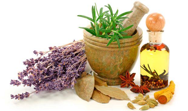 Europa revisa los requerimientos para autorizar hierbas medicinales