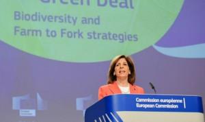 Covid-19 vacuna: la UE prevé que esté disponible para finales de año