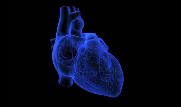 Fabrican el primer corazón en un chip impreso totalmente en 3D