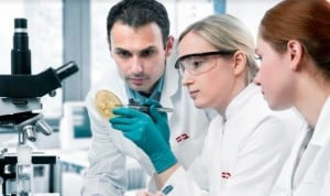 La Fundación Renal convoca sus premios de investigación en Nefrología