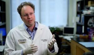 Fusionar dos inmunoterapias aumenta su eficacia para tratar la leucemia