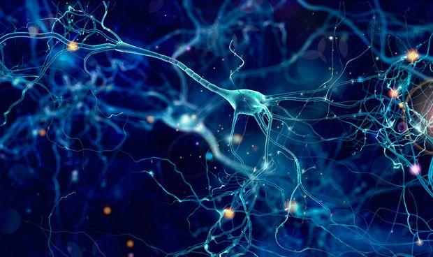 Hacer 'cosquillas' al cerebro con estimulaci�n el�ctrica mejora la memoria