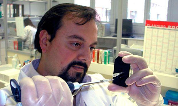Hallan un potencial tratamiento para uno de los linfomas más agresivos