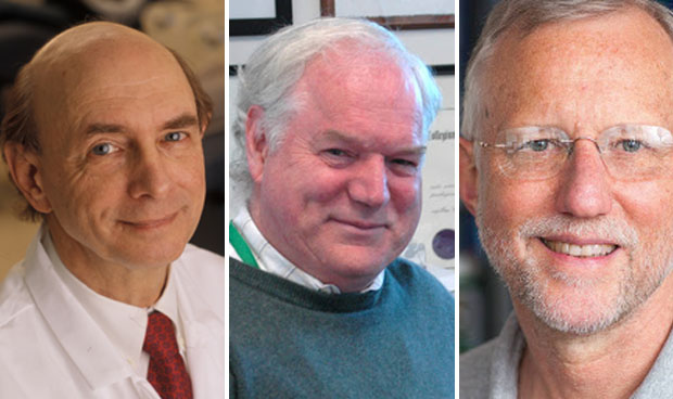 Premio Nobel de Medicina 2020 a los descubridores del virus de la hepatitis C