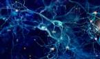 Hasta tres de cada diez personas con epilepsia no responden a fármacos