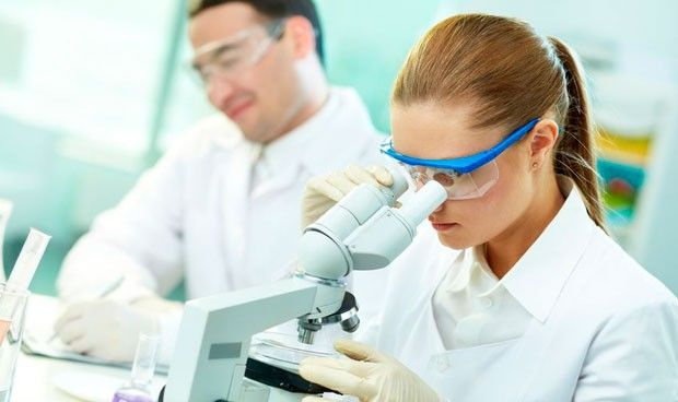 Identifican por primera vez un mecanismo de la leucemia linfoblástica