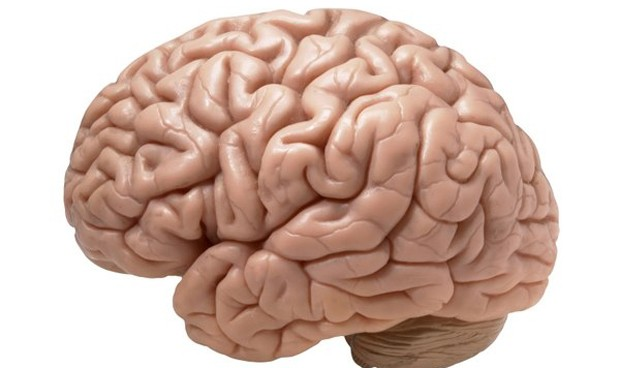 Identifican un nuevo tipo de demencia que se confundía con alzhéimer