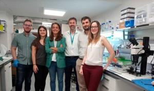 Identifican una proteína para elegir tratamiento para tumores cerebrales