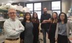 Identifican una proteína que protege contra el hígado graso no alcohólico