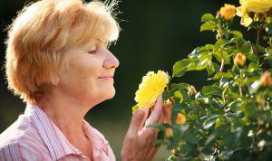 Investigadores conectan el olfato con la detección precoz de alzhéimer
