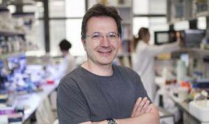 Investigadores descubren una proteína clave en el desarrollo del autismo