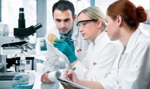Investigadores españoles descubren cómo eliminar células tumorales dormidas