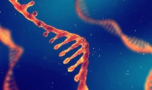 Investigadores hallan nuevas causas de autismo en el ADN 'basura'