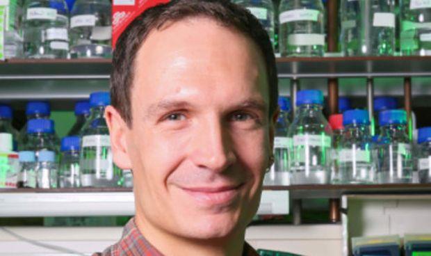 Investigadores identifican neuronas implicadas en los recuerdos traumáticos